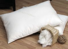 organic lifestyle - organic cotton pillow