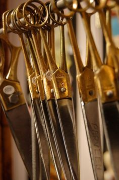 Atelier couture, sewing, Fashion atelier, scissors