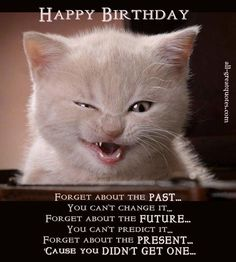 Funny cat birthday ecards best happy birthday quotes images on funny cat themed birthday cards funny Funny Happy Birthday Messages, Happy Birthday Pictures, Happy Birthday Sister, Happy Birthday Quotes, Funny Birthday Cards, Birthday Greetings, Birthday Humorous, Birthday Sayings, Birthday Memes