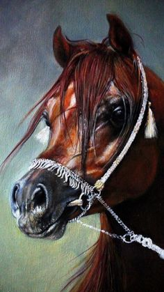 Arab Horse Paintings Arabians Artist British Horse Painter Born in Barnsley paintings of Hunting Scenes Hounds and Arab Horses Arabian Art Best Dog Portrait UK