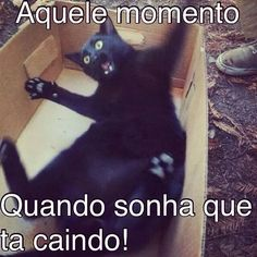 Kkkk.... Laugh A Lot, Lol, Funny Love, Funny Moments, Funny Images, Funny Cats, Laughter, Funny Quotes, Jokes