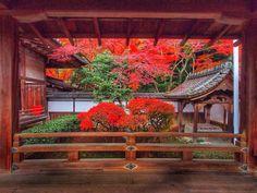 Thank-you for coming my gallery(^^) Bishamon-Doh Temple Kyoto Japan  I took this photo at the latest of November 11月下旬撮影です。  今日も1日お疲れ様ですm(__)m いつも、たくさんのご来訪 『いいね』『コメント』 『フォロー』をいただき、 ありがとうございますm(__)m  本日のひと足お先の紅葉Shot Last Shot は・・ 護法山安国院出雲寺 通称 毘沙門堂です。  ご覧いただき、 ありがとうございましたm(__)m  #Kyoto #Kyotojapan #temple #japanbeauty #京都 #お寺 #紅葉 #日本美 #そうだ京都にいこう