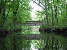 Bridge over Blackstone Canal  8x10 matted to fit by NJSimages,