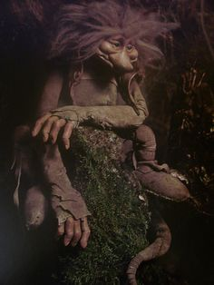 Wendy Froud Troll by Chester the 1st, via Flickr