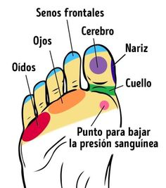 Mejore su bienestar masajeando las partes correctas de sus pies - e-Consejos Acupuncture Benefits, Massage Benefits, Massage For Men, Massage Techniques, Lower Blood Pressure, Health Promotion, Reflexology, Massage Therapy, Arm Workouts