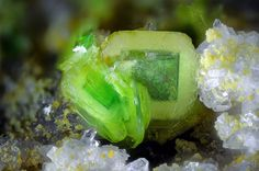 Uranospinite, Zeunerite Ca(UO2)2(AsO4)2·10H2O, Cu(UO2)2(AsO4)2·12H2O Locality: Montoso Quarries, Bagnolo Piemonte, Cuneo Province, Piedmont, Italy Field of View: 2.4 mm Lemon-yellow uranospinite with green epitaxial growth of zeunerite. Beppe Finello's Photo