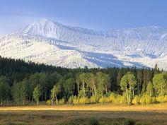yellow stone national park.
