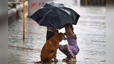 O reamintire a bunătății. Fapte bune și momente incredibil de emoționante.