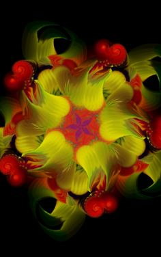 Fractals - By Unknown
