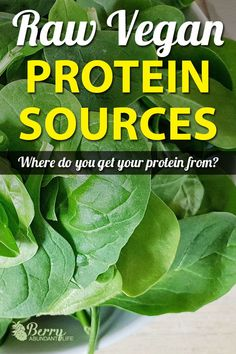 Protein Sources Where do raw vegans gets protein from? Read about The Protein Myth, and 13 Fantastic Sources of Raw Vegan Protein. Where do raw vegans gets protein from? Read about The Protein Myth, and 13 Fantastic Sources of Raw Vegan Protein. Raw Vegan Recipes, Vegetarian Recipes Easy, Vegetarian Food, Vegan Recepies, Vegan Raw, Protein Recipes, Vegan Food, Healthy Recipes, Protien Diet