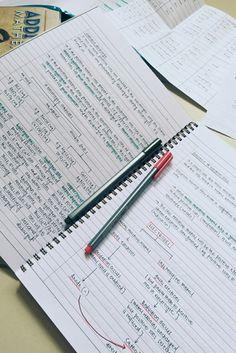 Organization, students, study, class notes, school, university, pretty
