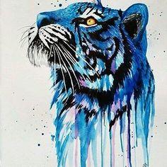 Tiger Tales…
