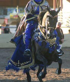 2014 SCOTTSDALE ARABIAN HORSE SHOW