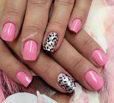 Oncinha + rosa