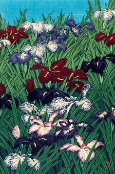 blackcoffeecinnamon:  Kawase Hasui (1883-1957)  川瀬巴水 Iris アヤメ、1929