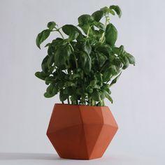London designer Nick Fraser presents these faceted terracotta plant pots