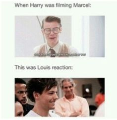 Oml (oh my Larry ) One Direction Humor, One Direction Pictures, I Love One Direction, Direction Quotes, Larry Stylinson, Harry Styles Memes, Larry Shippers, Indie, Louis And Harry