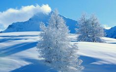Snowfall Wallpaper In This Post I Show You The Beautiful Snow Phtos Winter Wallpapers Views Be