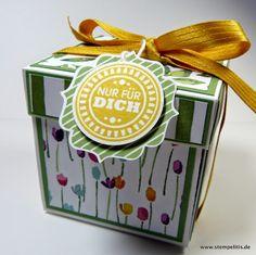 Stempelitis.de: Anleitung für die Explosionsbox, Stampin up, Explosionsbox, Geschenk, Verpackung