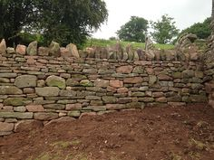 Completed section of our dry stone wall - a wonderful thing.