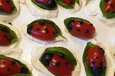 Tomate-Mozzarella-Marienkäfer von Chefkoch-Video   Chefkoch Tomate Mozzarella, Snacks Für Party, Caprese Salad, Recipies, Thanksgiving, Pudding, Desserts, Summer, Bridal Shower