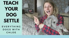 Everything, Your Dog, Teaching, Tips, Learning, Education, Teaching Manners