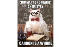 Chemistry Cat: Chemistry Cat - Organic Carbon