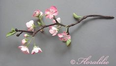 blossom branch - Google Search