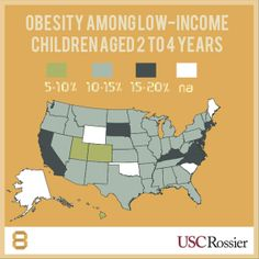 Obesity among low-income children aged 2 to 4 years, across the United States.