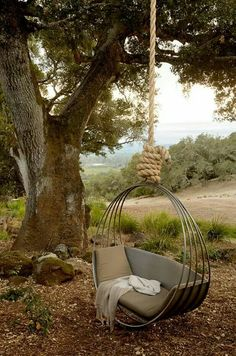 Tree swing.. want!