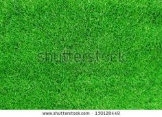 'Landscape supplies' refer to the various materials and tools that are used to create a commercial or residential landscape. Lawn Turf, Landscaping Supplies, Top Soil, Green Lawn, Drought Tolerant, Landscape, Commercial, Tools, Create