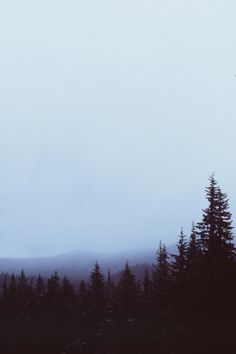 Reminds me of Oregon