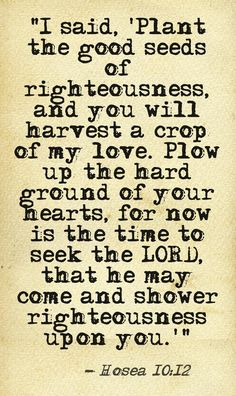 """""""I said, 'Plant the good seeds of righteousness, and you will harvest a crop of my love. Plow up the hard ground of your hearts, for now is the time to seek the LORD, that he may come and shower righteousness upon you.'"""" -Hosea 10:12 http://www.biblestudytools.com/nlt/hosea/10-12.html This quote courtesy of @Pinstamatic (http://pinstamatic.com)"""