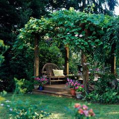 Grapevine smothered Pergola. Nothing dresses up a plain pergola faster than scrambling, spreading grapevines. Planted at the base of each support, grapevines add lush foliage that shades the seating area beneath. Another benefit? Fresh fruit for the picking, of course. Just pluck a ripened cluster as you relax. That would be nice!!