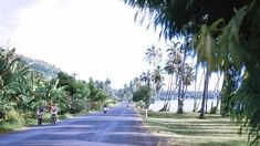 Tahiti, Destinations, Country Roads, Sun, Outdoor, Islands, Alphabet, Mood, Vintage