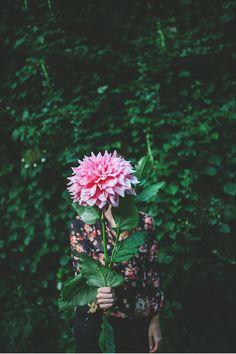 i love giant dahlias.  Bo·tan·i·cal {uncle Dave's garden // lacey, washington } at beetle & fig