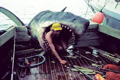 Behind the scene [inside the scene?] of 'Jaws.'
