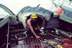 "Behind the scenes of ""Jaws"", Martha's Vineyard"