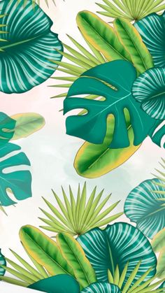 How To Use WIX / WIX Design Tips / WIX Website Design - Wix Website - The easiest way to create a website. - How To Use WIX / WIX Design Tips / WIX Website Design Wix Website The easiest way to create a website. Tropical Wallpaper, Flower Wallpaper, Screen Wallpaper, Pattern Wallpaper, Wallpaper Backgrounds, Iphone Wallpaper, Cute Wallpapers, Aesthetic Wallpapers, Website Web