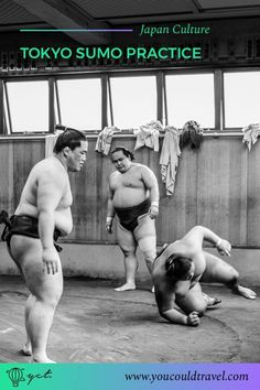 A Japanese cultural experience: Sumo Wrestling in Tokyo - Sumo wrestling in Tokyo is an incredible cultural experience which can only be accessed with a professional tour guide. We recommend Beauty of Japan, who showed us around, told us about the history of sumo and translated many questions we had for the sumo wrestlers. Bonus: awesome sumo photographs.