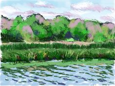 Craig Longmuir, 'The Norfolk Broads', ipad drawing from observation.