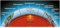Convection currents in the mantle cause oceanic plates to spread apart as new rock rises to the surface at spreading zones.
