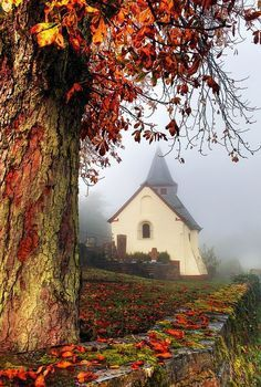 Love the foggy fall pic with a church