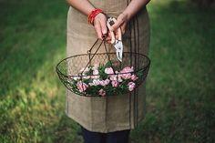 Beautiful Home Gardens, House Beautiful, Grandmas Garden, Stock Imagery, Pink Garden, Green Lawn, What A Wonderful World, Growing Flowers, Plant Hanger