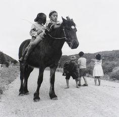 Ans Westra  Near Ruatoki , 1963 [No prints available]  _______