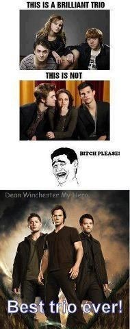 Can argue between HP and SPN but it's no contest when it comes to twilight lol
