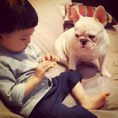"The friendship between Tasuku and his white French Bulldog ""Muu"" / Tasuku et Muu, ""amis pour la vie"" et stars d'Instagram"