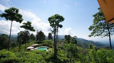 en daar is het: Ella Jungle Resort. Te midden van deze woeste natuur bevind zich een dorpje. De huisjes zijn van natuursteen, hout en glas. De rust Ella Sri Lanka, Resorts, Holidays, Mountains, Nature, Travel, Holidays Events, Naturaleza, Viajes