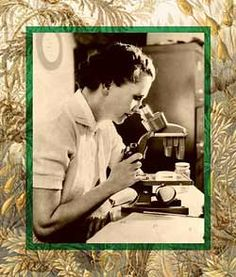 Rachel Carson Microscope