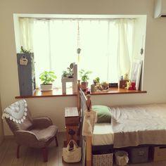 NORAさんの、部屋全体,観葉植物,植物,DIY,一人暮らし,出窓,賃貸,1DK,ひとり暮らし,原状回復,植物棚,NO GREEN NO LIFE,ボタニカル,大葉,植物のある暮らし,定点観測,のお部屋写真